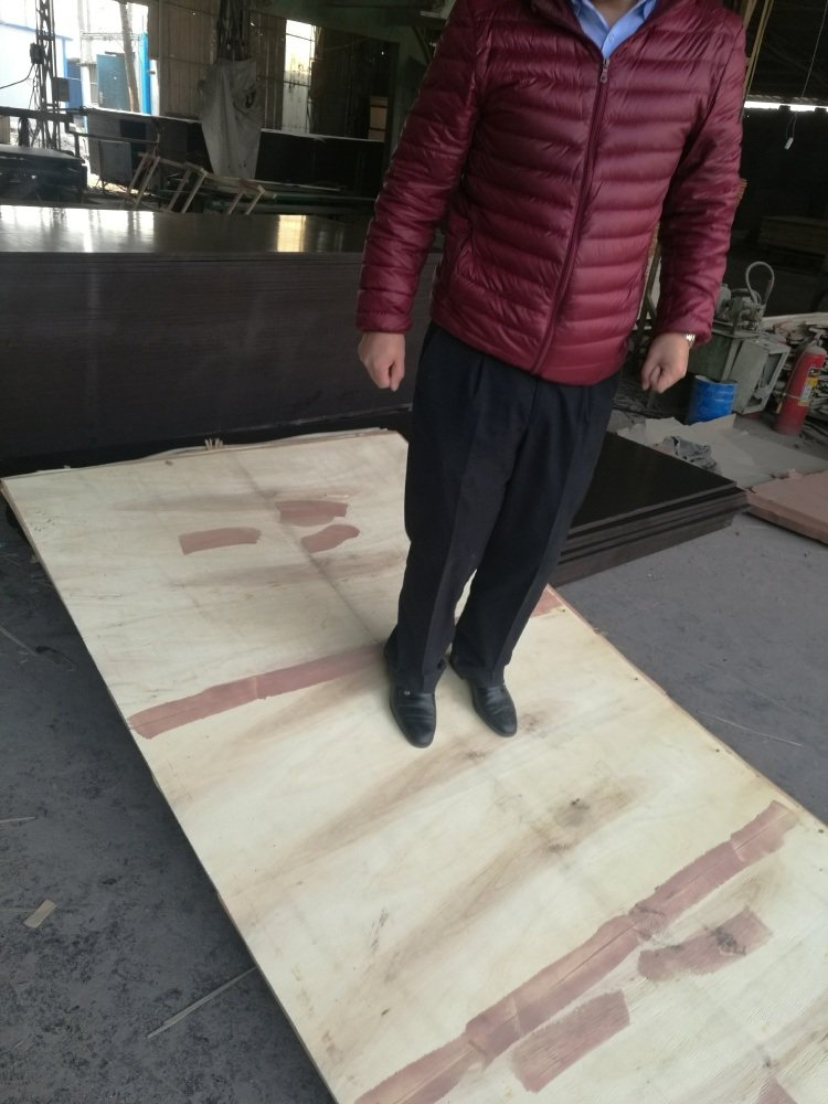 Marine Film Faced Plywood Poplar/Hardwood Core Brown Film