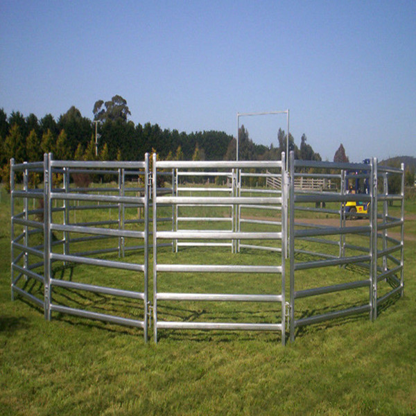 Galvanized Pipe Cattle Fence Panel Metal Tube Livestock
