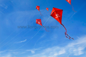 Vodafone Promotional Gift Children Kite