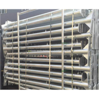 Hot DIP Galvanized Scaffolding Steel Bridge Leg