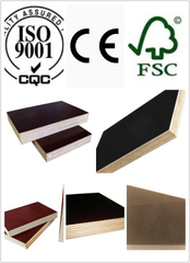 High Quality Tego Plywood Dynea Film WBP Glue Poplar Core (HBT009)