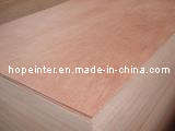 Bintangor Plywood / Okoume Plywood (HL005)