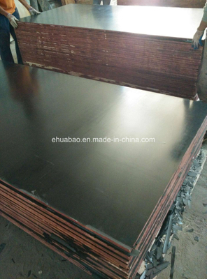 1220*2440mm First Grade Film Faced Plywood