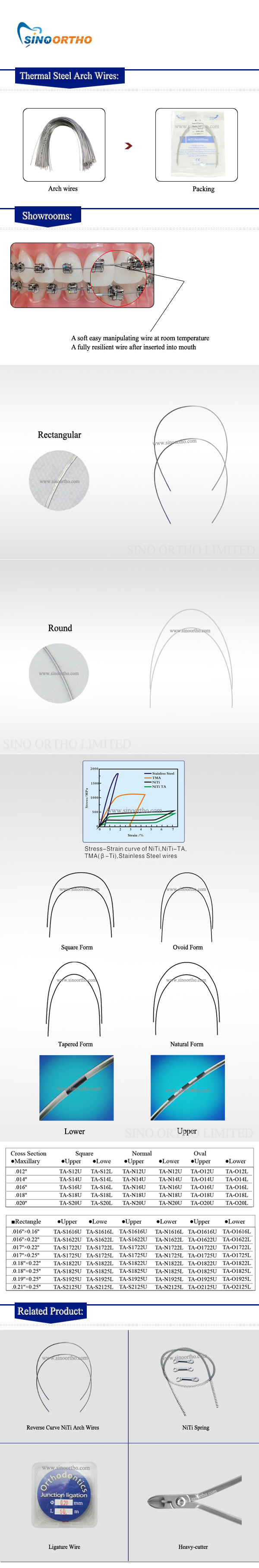 Thermal-Steel-Arch-Wires