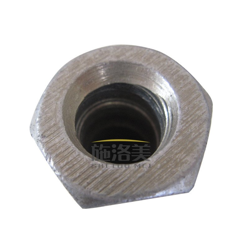 Formwork Accessories Hex nut SF11