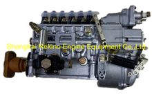 BP5B04 612600081264 Longbeng fuel injection pump for Weichai WD615