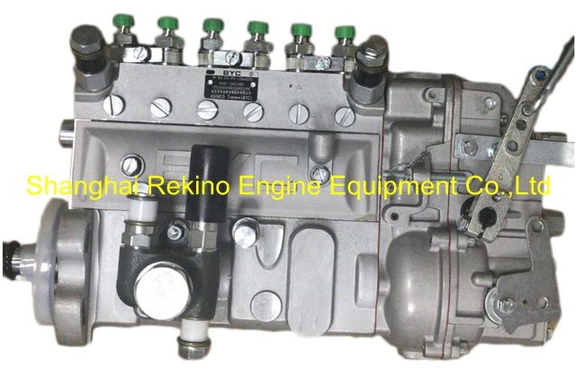 13021363 10402376075 BYC fuel injection pump for Weichai TBD226B-6 (WP6D)