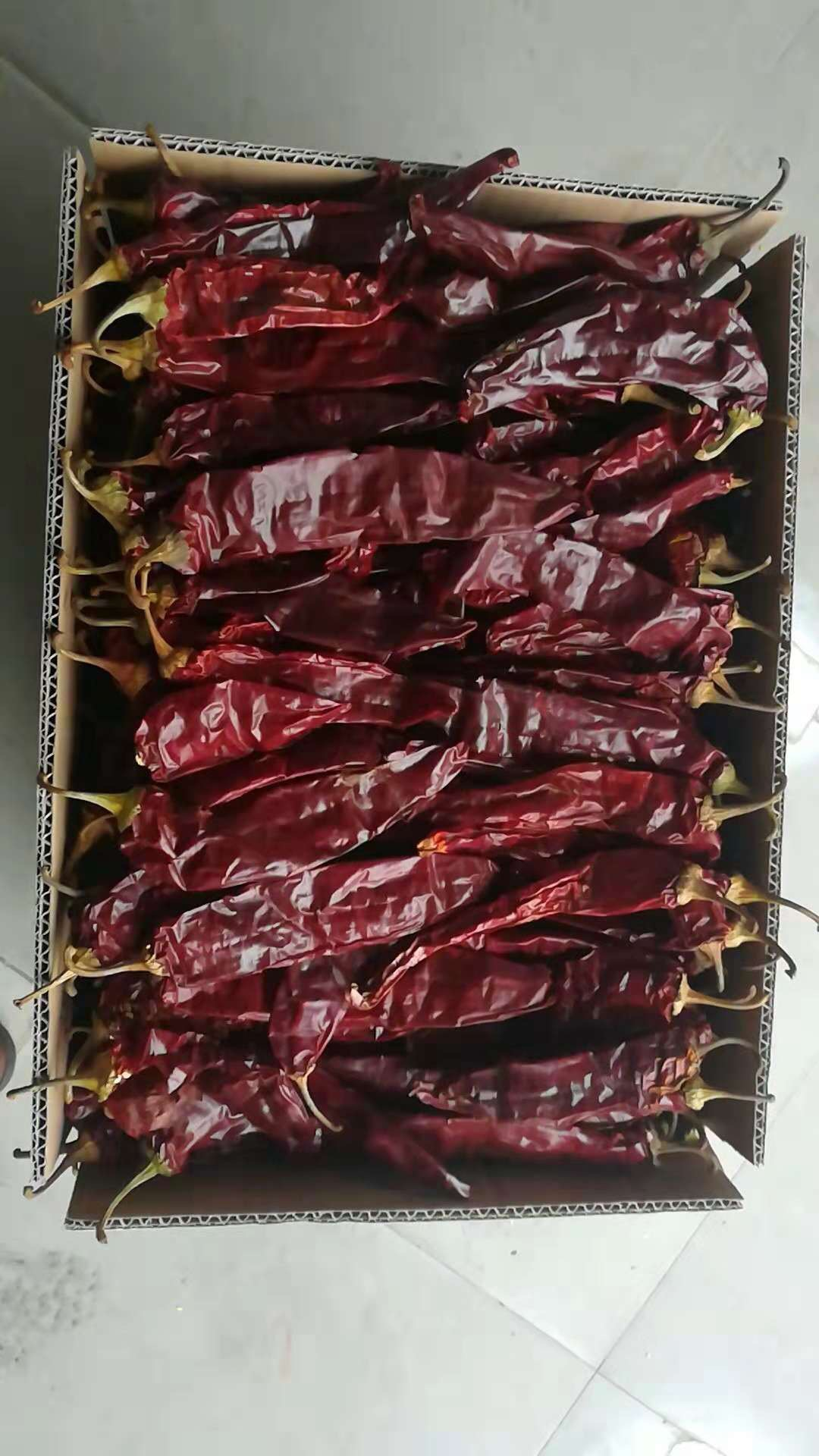 Bulk Whole Dried Paprika Pods with Stem for Food Industry