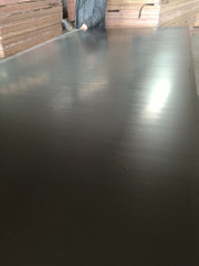 Black Film Waterproof Plywood for Shuttering