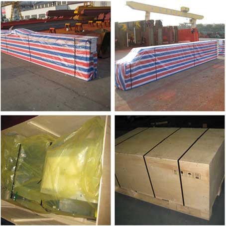 5-ton-European-sing-girder-overhead-crane-for-New-Caledonia-packing