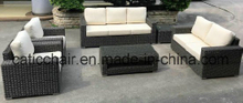 Patio Furniture Holiday Village PE Rattan Sofa Ln-804