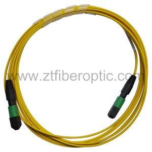 Singlemode 12fibers MPO-MPO Fiber Optic Patch Cord