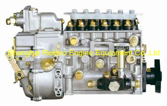 BP5300 612600081247 LONGBENG fuel injection pump for Weichai WD618