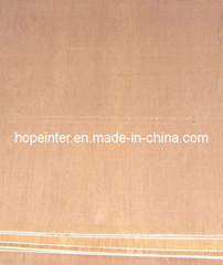 Plywood/Packing Plywood (HL033)