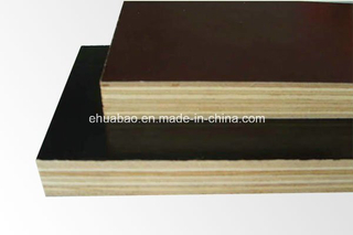 Formwork Panel-Film Faced Plywood 21*1250*2500mm