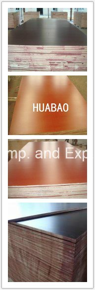 18*1220*2440mm Film Faced Plywood First Grade
