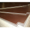 Peri Quality Film Faced Plywood Poplar Core Brown Film