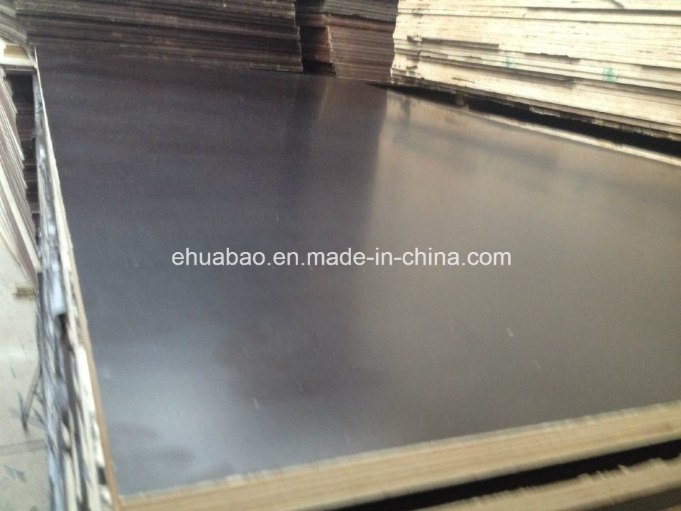 Poplar Core Shuttering Plywood/ Construction Plywood/Marine Plywood