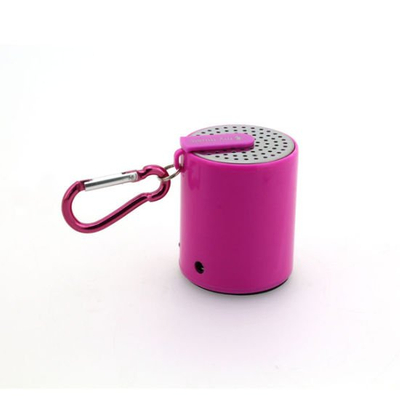 Bluetooth Speaker with Buckle for Easy Carry Style No. Spb-P01b