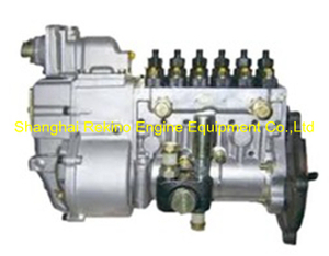 BP20016 612601080767 LONGBENG Fuel injection pump for Weichai WP10 generator
