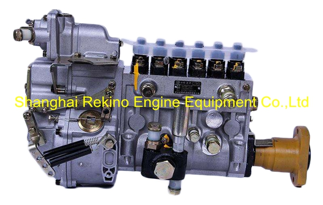 BP2228 612601080340 LONGBENG fuel injection pump for Weichai WP12D