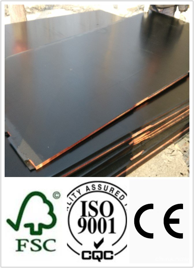 Top Quality Construction Plywood 1220*2440mm Size (HBC006)