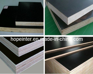 Black Brown Hardwood Film Faced Plywood