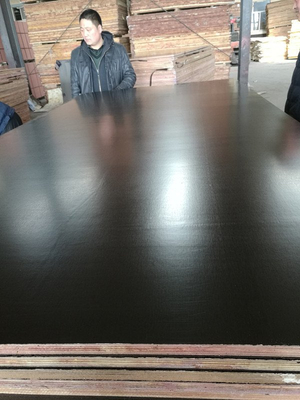 Brown /Black Film Faced Plywood Poplar Core for Construction