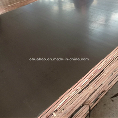 12mm Poplar Core Film Faced Plywood Brown Film First Grade
