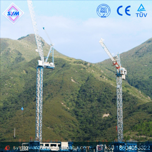 FL25/24 Chinese Manufactured Luffing Jib Tower Crane - Buy