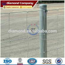 factory direct sale galvanized/pvc coated field fence/galvanized fencing system
