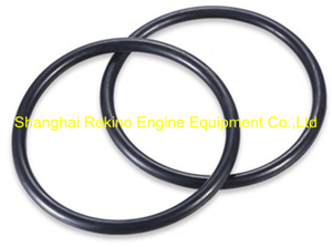 C62.05.01.0014 O ring Weichai engine parts CW6200 CW8200 CW200