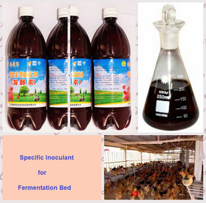 -seaweed bio organic inoculant for making fermented bed
