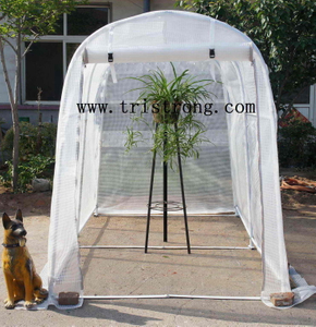 Garden House, Hothouse, Greenhouse, Garden Shed (TSU-162g)