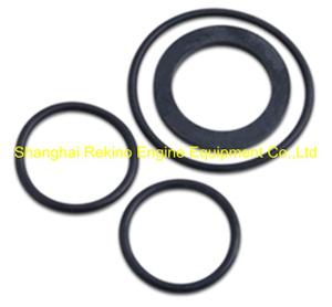 N21-QDFJQ Starting valve seal ring Ningdong engine parts for N210 N6210 N8210