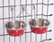 Stainless Steel Pet Feeder Dog Bowl Color Painting