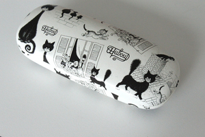eyeglasses case(HX453)