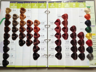 54 Colors Vb Salon Hair Color Chart