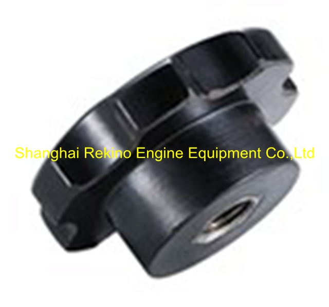 N.01.034B Cover screw Ningdong engine parts for N160 N6160 N8160