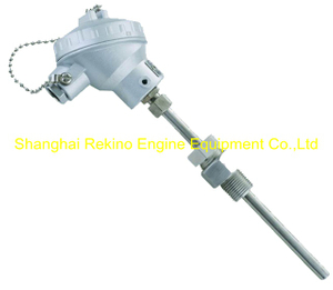 WRNK-238 JNDZ thermocouple
