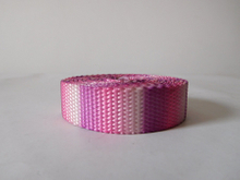 China Nylon webbing with thermal transfer printing for dog belt