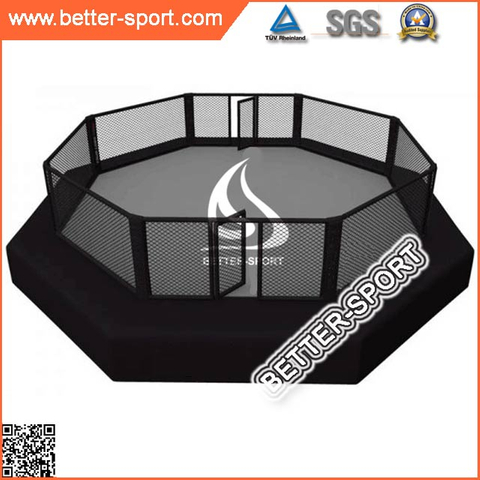 MMA Cage with catwalk