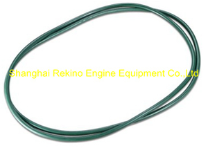 230.110.03 Seal ring Guangchai engine parts 230