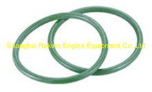 230.113.13 O ring for injector Guangchai marine engine parts 230