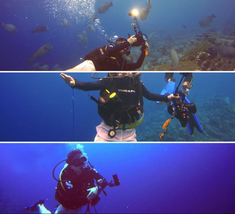 underwater test of lEOBEN DIVE VIDEO TORCHES.jpg