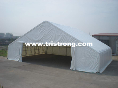 Steel Structure Warehouse (TSU-6549)