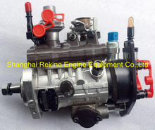 9520A444G 2644C339 Delphi Perkins Diesel fuel injection pump