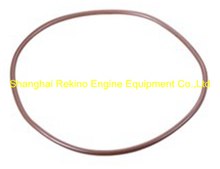 625001000041 O ring Weichai engine parts CW250 CW6250 CW8250