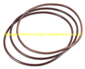 O ring C62.02.04.0002 for Weichai engine parts CW200 CW6200 CW8200