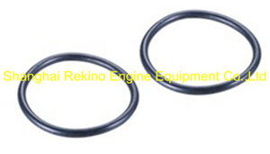 230.408.16 O ring for plunger Guangchai marine engine parts 230